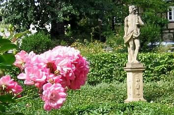 Rosengarten im Französischen Garten in Celle