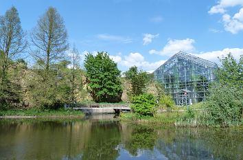 Garten Osnabrück quermania botanischer garten der universität osnabrück