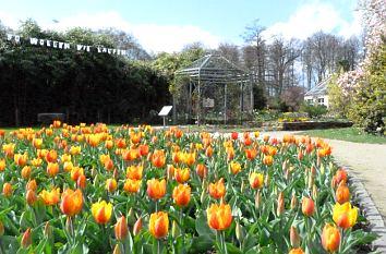 Garten Münster quermania schlossgarten und botanischer garten am schloss in